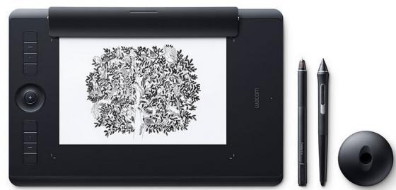 все цены на Графический планшет Wacom Intuos Pro Medium Paper PTH-660P-R + Corel Painter 2016 онлайн