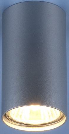 Купить Потолочный светильник Elektrostandard 1081 5257 GU10 SL серебро 4690389104381