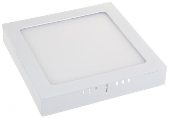 Накладной светодиодный светильник Elektrostandard DLS020 24W 4200K 4690389084591 накладной светильник dls 22 холодный белый maysun