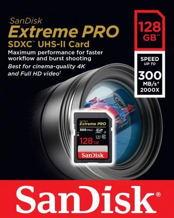 Карта памяти SDXC 128Gb Class 10 Sandisk SDSDXPK-128G-GN4IN