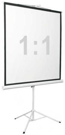 Экран переносной на штативе Digis KONTUR-D DSKD-1104 178 x см