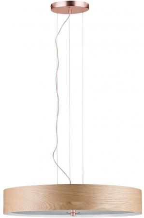 Подвесной светильник Paulmann Alva 79649