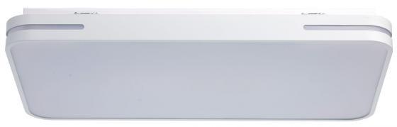 Потолочный светодиодный светильник с пультом ДУ MW-Light Ривз 3 674012801