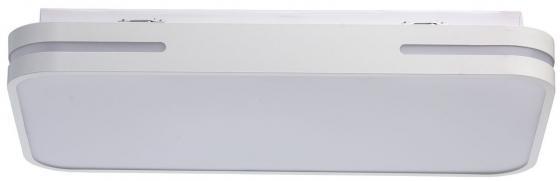 Потолочный светодиодный светильник с пультом ДУ MW-Light Ривз 3 674012901