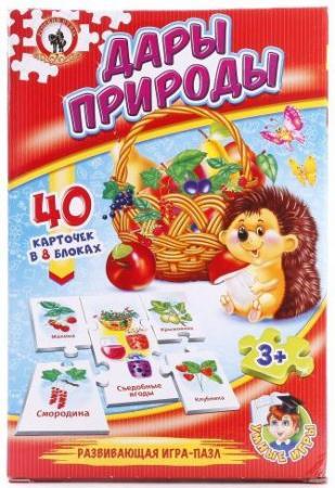 Настольная игра развивающая Русский Стиль Дары природы 03991 настольная игра стиль жизни доббль ут000001805