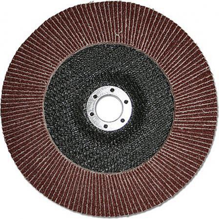 Фото - Круг лепестковый торцевой КЛТ 115 Х 22 Р 40 (№40) тип 1 HITACHI круг лепестковый торцевой клт 125 х 22 р 24 63 тип 1 hitachi
