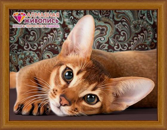 Алмазная мозаика АЛМАЗНАЯ ЖИВОПИСЬ АЖ-1458 Абиссинская кошка масляная живопись yue hao yh0334 7585