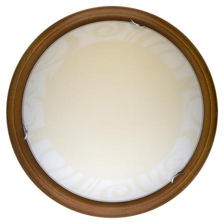 Настенно-потолочный светодиодный светильник Toplight Ginger TL9620Y-00OA