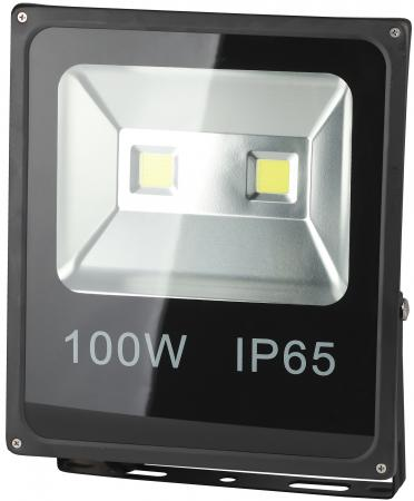 Прожектор светодиодный ЭРА LPR-100-6500К-М  100Вт 6500к 7000Лм 335х290х70мм
