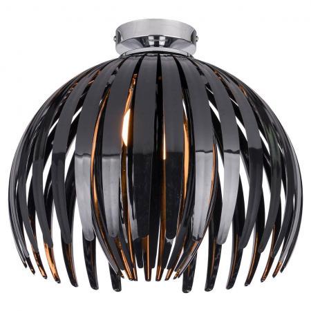 Потолочный светильник Lussole Lgo LSP-9536 энкор 9536