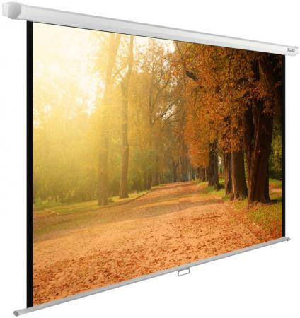 Экран настенно-потолочный Cactus CS-PSWE-200X125-WT —