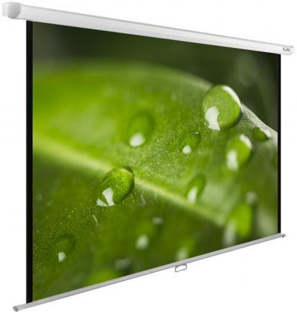 Экран настенно-потолочный Cactus CS-PSWE-200X150-WT 150 x 200 см