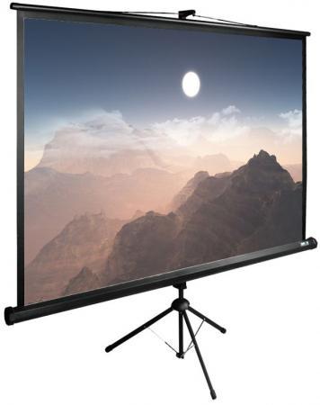 Фото - Экран напольный рулонный Cactus CS-PSTE-180X180-BK 180 x 180 см набор для ухода за техникой cactus cs s3006 180 мл