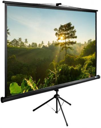 Фото - Экран напольный рулонный Cactus CS-PSTE-200Х200-BK 200 x 200 см кровать orthosleep ниагара шоколад жесткое основание 200х200