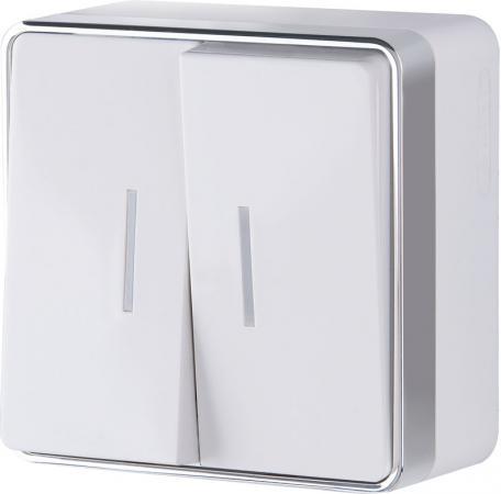 Выключатель двухклавишный с подсветкой Gallant белый WL15-03-03 4690389102073