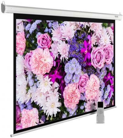 Экран настенно-потолочный Cactus MotoExpert CS-PSME-420x315-WT 420 x 315 см цена и фото