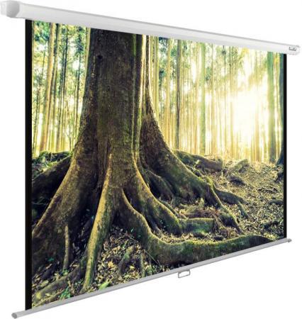 лучшая цена Экран Cactus 220x220см WallExpert CS-PSWE-220x220-WT 1:1 настенно-потолочный рулонный
