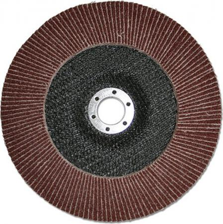 Фото - Лепестковый круг 125 Х 22 Р220(№6) КЛТ тип 1 125 х 1 6 х 22 с40 камень