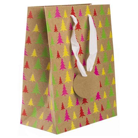 Пакет подарочный бумажный крафт с флуоресцентной печатью, 178*229*98 мм недорого