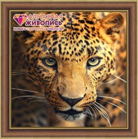 Алмазная живопись Портрет леопарда 30*30 мировая живопись