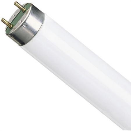 Лампа люминесцентная Osram Basic G13 36W/765 лампа люминесцентная ft8 15вт 54 g13 6500к