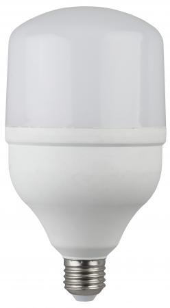 Лампа светодиодная ЭРА LED smd POWER 20W-6500-E27 (40/800)