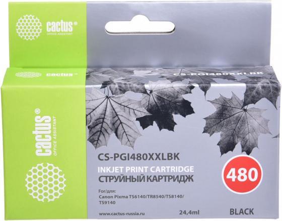 Картридж струйный Cactus CS-PGI480XXLBK черный (24.4мл) для Canon Pixma TR7540/TR8540/TS6140/TS8140 цена