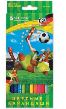 "Набор цветных карандашей BRAUBERG ""Football match"" 12 шт 176 мм"