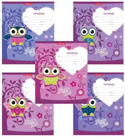 """Тетрадь 12 л., ERICH KRAUSE, клетка, мелованный картон обложка, """"Lucky Owl"""", 42557"""