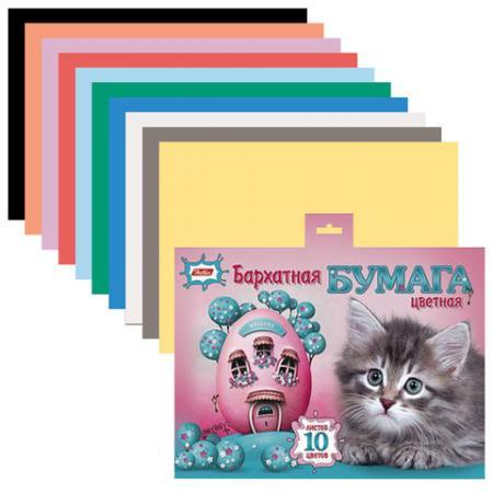 Цветная бумага Hatber Котенок A5 10 листов