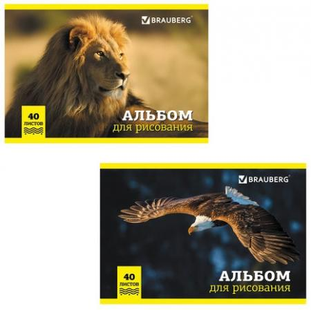 Альбом для рисования BRAUBERG Дикие животные A4 40 листов