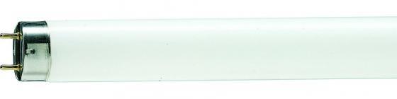 Лампа люминесцентная Philips TL-D G13 36W/33-640 SLV цена
