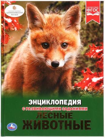 УМКА. ЛЕСНЫЕ ЖИВОТНЫЕ (ЭНЦИКЛОПЕДИЯ А4). ТВЕРДЫЙ ПЕРЕПЛЕТ. БУМАГА МЕЛОВАННАЯ 130Г в кор.15шт шнуровка умка лесные животные