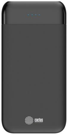 Фото - Мобильный аккумулятор Cactus CS-PBFSFL-10000 Li-Pol 10000mAh 1A+2.4A графит 2xUSB аккумулятор