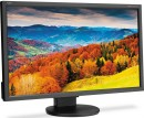 "Монитор 27"" NEC EA273WMI черный AH-IPS 1920x1080 250 cd/m^2 6 ms VGA DVI HDMI DisplayPort Аудио USB4"